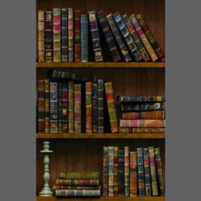 Harry Potter library bookshelf adhesive wallpaper