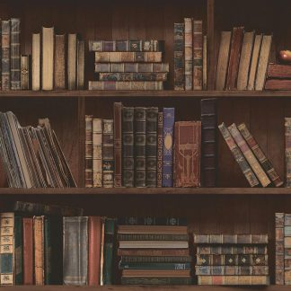 Harry Potter like 'Restricted Section' Bookshelf Library wallpaper