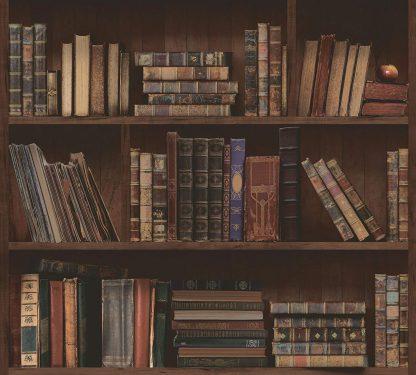 Harry Potter like 'Restricted Section' Bookshelf Library wallpaper