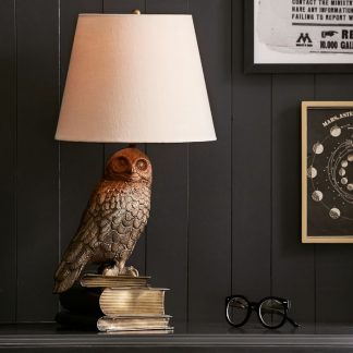 Harry Potter Hedwig lamp from PB Teen