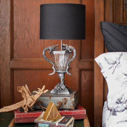 Harry Potter Triwizard Cup Lamp from PB Teen